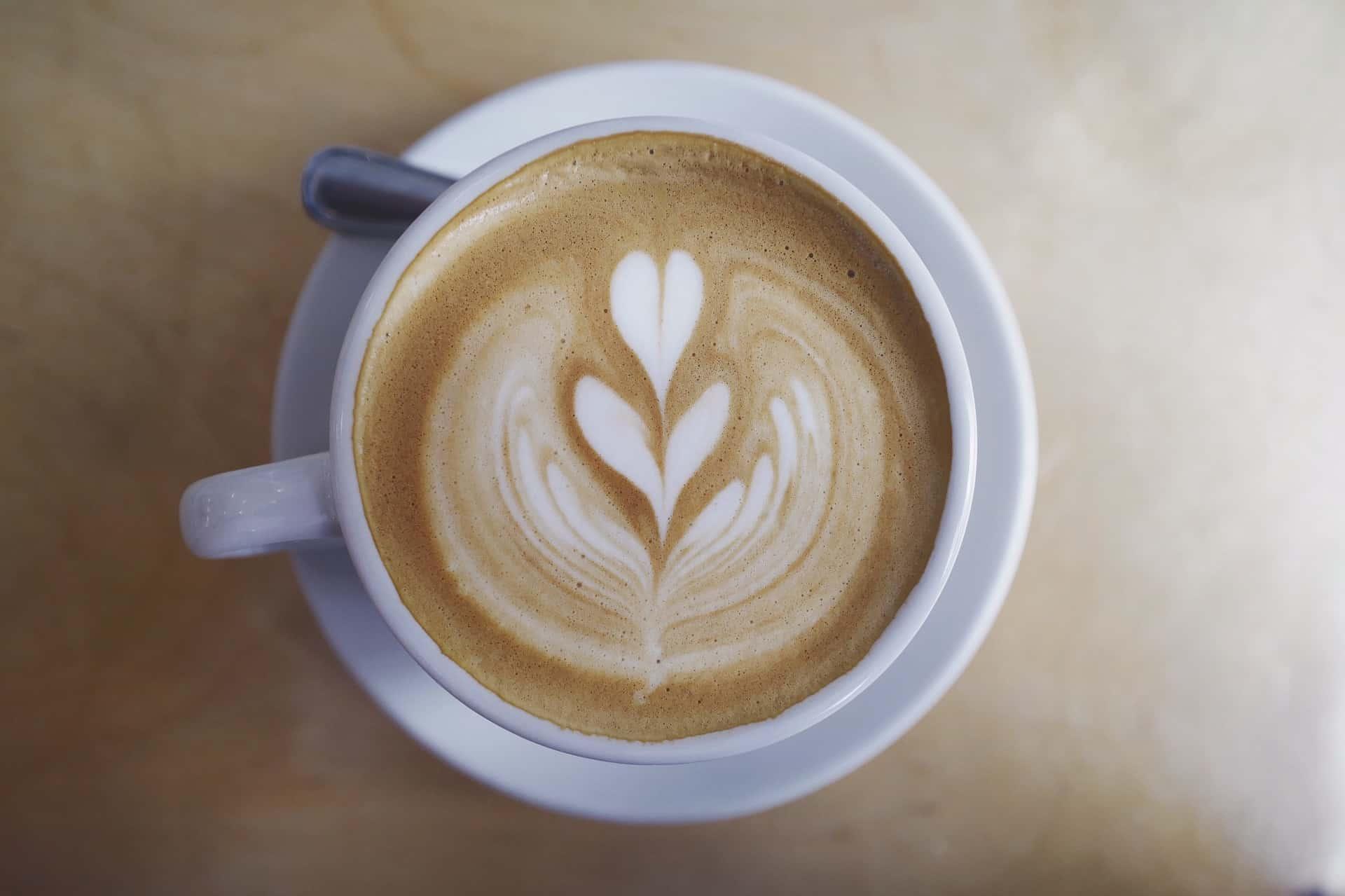 coffee tourleadertreviso